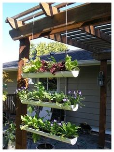 Grow Plants in Planters That Hang on Your Fence - Yahoo! Voices