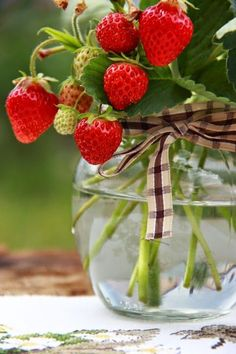 Fresh Strawberry Plant Centerpieces, pretty and delicious!  ~~  Houston Foodlovers Book Club