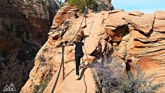 If you look at Zion National Park's hiking guide you'll see the words STEEP & NARROW. Appropriate adjectives for the iconic Angels Landing, a mile round Zion National Park, National Parks, Hiking Guide, Ava, Landing, Mount Rushmore, Angels, Mountains, Travel