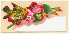 Antique Images: Free Bird Clip Art: 2 Digital Scraps of Birds and Flowers Roses in Basket
