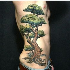 This is a little repost. But I would be really stoked to do more large tree…