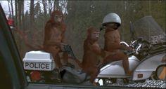 Jumanji - Internet Movie Firearms Database - Guns in Movies, TV and Video Games Jumanji 1995, Jumanji Movie, Cute Monkey, Internet Movies, Animal Crackers, Robin Williams, Taurus, Movie Tv, Video Games