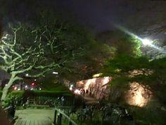 2015 春 福岡城