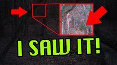 True Creepy Story: Disappearance Of Brandon Swanson | Missing 411 ...