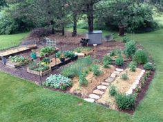 My garden June 18 th