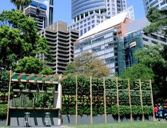 Salad Bar sydney green - Google Search