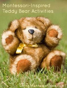 Ten little teddy bears book