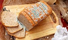 Ekmek Neden Küflenir? Küflü tarafı kesip geriye kalanı yemek zararlı mı? – BilgiFili