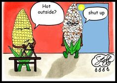 Happy Hump Day Cartoons | Even More Hump Day Funnies « Motley News and Photos