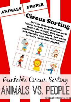 Circus Sorting - Animals and People
