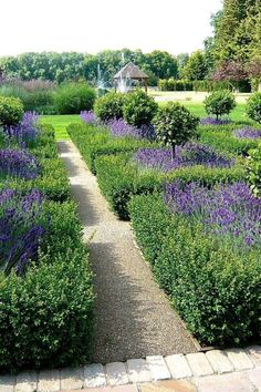 35 Best Ideas For Formal Garden Design - It is said that formality and symmetry go hand in hand, therefore it is vital for you to set up a central axis around which borders and features would be arranged.It is often observed that the main viewing position in the house rarely central to the lawn. Usually a good deal of work is done on the left side of the axis and the right hand boundary is at an odd angle.  #FormalGardenDesign #GardenDesignIdeas