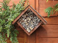 Bee hotel for solitary bees. With roomservice I'm sure. Insect Hotel, Bug Hotel, Wild Bees, Small Bees, Mason Bees, Carpenter Bee, Garden Insects, Garden Plants, Bee House