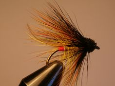 my Willie Gunn Bumble Muddler, size 6. Hope this will do the trick with spring salmon on Lough Beltra next month!