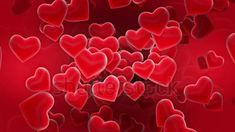 Good Night Love Images, Love Heart Images, Cute Love Images, Heart Pictures, Red Love Heart, Background Wallpaper For Photoshop, Love Background Images, Heart Background, Rose Flower Wallpaper
