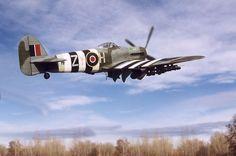 """Hawker Typhoon Ib """"Bubbletop"""" by Ian Robertson (Hasegawa 1/48)"""