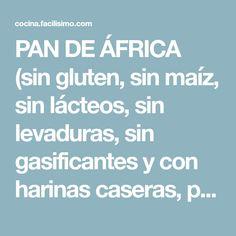 PAN DE ÁFRICA (sin gluten, sin maíz, sin lácteos, sin levaduras, sin gasificantes y con harinas caseras, para dietas muy estrictas)