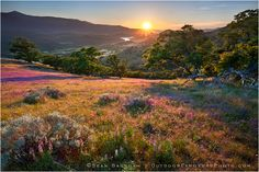 Southern Oregon Photographer / Outdoor Exposure Photo
