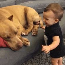 AWWW...UNCONDITIONAL BABY LOVE!!!❤️
