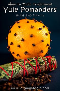 The Yule Pomander has been made for centuries by families around the world. Considered a blessing, traditionally Pomanders were believed to bring prosperity, protection, health and strength to a… More Winter Activities For Kids, Christmas Activities, Crafts For Kids, Christmas Gift Guide, Kids Christmas, Yule Traditions, Spice Mixes, Winter Fun, Family Holiday