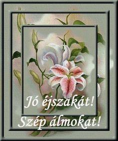 Gifs, Good Morning Good Night, Photo Colour, Nature Photos, Animated Gif, Decorative Boxes, Flowers, Blog, Art