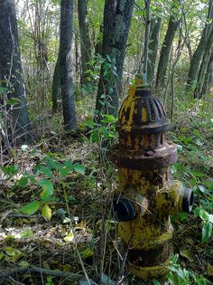 Abandoned fire hydrant by Kelly Donaldson (bugdog), via Flickr