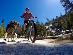 Team No Excuses: Man's Best Friend Is also Man's Most Reliable MTB Companion.