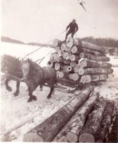 horse drawn sled images | Horse-drawn Logging Sled at Marsden's, circa 1930: Almaguin Highlands ...