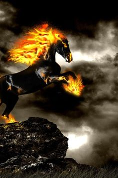 Fire horse.....