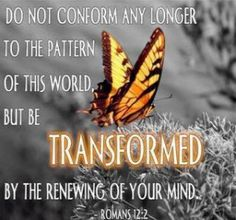 Transform Your Life by Renewing Your Mind with God's Word. You were born to break the rules and patterns of this world ♥☀️