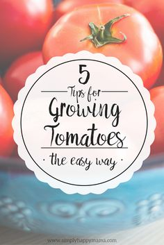 5 Tips for Growing Tomatoes the easy way. Great tips for beginners.