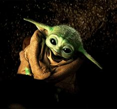 Adorable little womp rat. Yoda Gif, Yoda Meme, Yoda Funny, Yoda Images, Cuadros Star Wars, Star Wars Pictures, Star Wars Baby, Star War 3, Cultura Pop