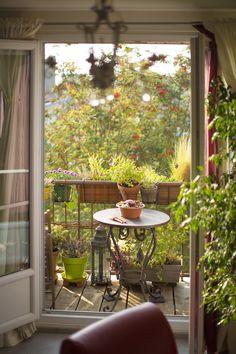 """""""Le balcon de Mélanie renvoie une image de sérénité et ce n'est pas un hasard si elle y pratique la méditation. Elle en a fait un lieu à son image, à la fois serein, paisible et plein de vie."""" Botanic®"""