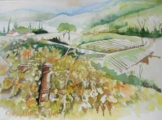 © by Maria Földy Aquarell...Weinberge