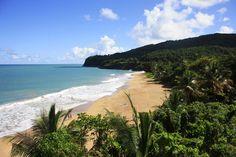 Le duo « surf and turf » ne se déguste pas que dans les assiettes : il se goûte aussi sur les îles de Guadeloupe, où les amoureux de la terre autant que ceux de la mer se plairont. Plages d'une beauté à couper le souffle et forêts luxuriantes sont au menu de cette destination des Antilles dessinée de vert et de bleu. Au menu, plages et paysages féériques.