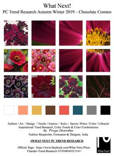 #Cosmosatrosanguineus #chocolatecosmos #AW19 #flowers #chocolate #velvet #wedding #fashionista #winter19 #autumnwinter2019 #NYFW #LFW #PFW #MFW #fashionweek #fashionforecast #fashiontrends #menswear #womenswear #kidswear #colorforecast #fashionindustry #mensfashion #fashionresearch #fashionprints #fashioninfluencer #moodboard #fashiondesigner #fashionresearch #textures #fashionfabric #fashionprints #ADcampaign #interiors #fashiontrends #colorforecast #Autumnwinter #inverno2019