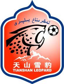 2011, Xinjiang Tianshan Leopard F.C. (Ürümqi, China) #XinjiangTianshanLeopard #Ürümqi #China (L9983)