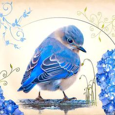 Buautiful, lovely and realistic bluebird. Style: Realistic. Color: Blue. Tags: Amazing, Beautiful, Great