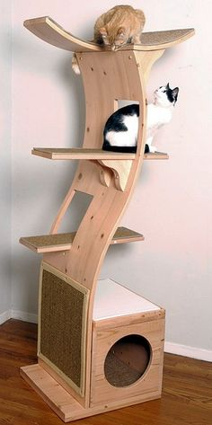 The Lotus kitty tree. ($399.99 from Amazon.com.)