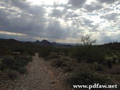 Hiking season in full force in AZ! ~~~~~~~~~~~~~~~~~~~~~~ CCW 1/28 at @arizona_firearms_gilbert  Register at www.pdfaw.net ~~~~~~~~~~~~~~~~~~~~ #pdfaw #heaven #azwx #weather #clouds #anniversary #rip #blessings #russianblue #rainbowbridge #pray #hiking #hikeaz #scottsdale #arizona #ccw #edc