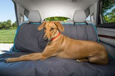 Car Seat Hammock Seat Protector, Trendy Home, Seat Covers, Dog Accessories, Dog Bed, Hammock, Convertible, Your Pet, Car Seats
