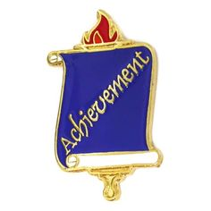 "School Pin - Achievement. 1/2""W x 7/8""H. Enamel color filled and gold plated. $3.95"