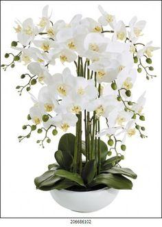 Hanspeter::Phalaenopsis x8 iK-Schale, blanco-amar. · 67cm Orchid Flower Arrangements, Orchid Centerpieces, Flower Vases, Exotic Flowers, Silk Flowers, White Flowers, Beautiful Flowers, Artificial Orchids, Phalaenopsis Orchid