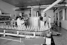 Coca-Cola oslavuje 50 rokov. Kedysi sa dala kúpiť len v reštauráciách 1. a 2. kategórie, v Tuzexe a v lietadle - Akčné ženy Coca Cola, Coke, Cola