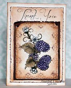 Heartfelt Creations | Black Ornamental Raspberries