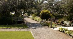 Visit South Walton | The Official South Walton Tourism Site