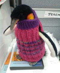 It's a penguin.  Wearing A sweater. What's not to love?