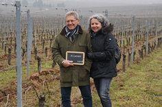 Dernière visite aux pieds de vigne pour le millésime 2015 - Journée Vinification au Domaine Stentz-Buecher #GourmetOdyssey