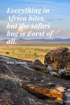 30 #Safari #Quotes to #Inspire You About #Africa. Looking for a new and exciting #adventure? These 30 famous quotes and safari #sayings will literally make you fall in #love with Africa! 😉 This is a very personal list. Some of these safari quotes first inspired me to #explore Africa, many many moons ago. These safari quotes continue to inspire me. #quote #travel #Jackman #BrianJackman #bug