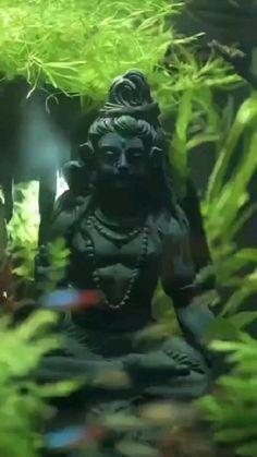 Photos Of Lord Shiva, Lord Shiva Hd Images, Shiva Lord Wallpapers, Shiva Songs, Radha Krishna Songs, Shiva Parvati Images, Shiva Hindu, Lord Shiva Stories, Happy Ganesh Chaturthi Images