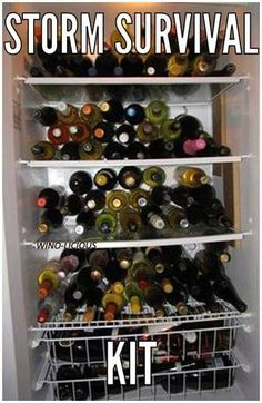 Wine Storm Survival Kit - We're hoping winter is over for now, but this is always good to remember!